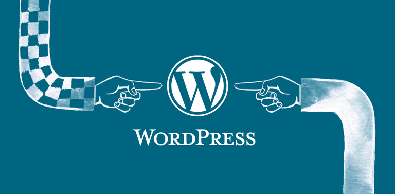 Choosing the Right Plugins for your WordPress Site